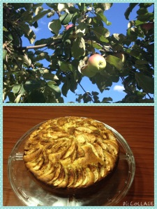Apples and Italian Apple Pie